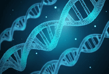 Importance of DNA Technology in Medical Practice