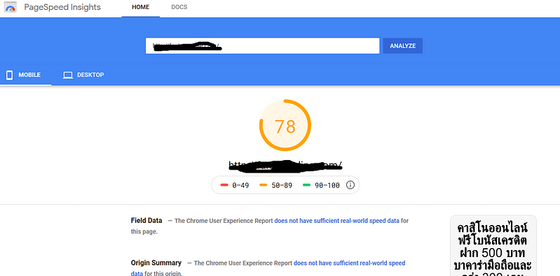 my fanta site page speed insight result 2